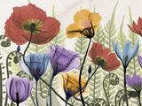 Flowers and Ferns 1 Giclée premium par Albert Koetsier