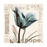 Tulip Hope Giclée premium par Albert Koetsier