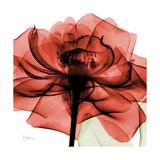 Ruby Rose 2