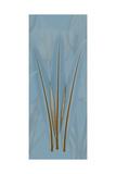 Brown Blue Palm