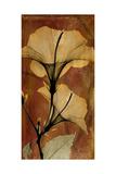 Topaze Opus Hibiscus