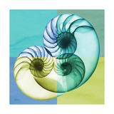 Aqua Filter 3