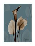 Deep Flora 1