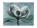 Magnolia Blues 1