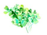 St Patrick 6