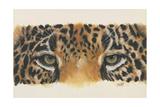 Eye-Catching Jaguar