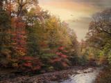 Riverbank Beauty