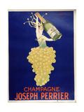 Champagne - Joseph Perrier