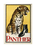 Panther Shoes