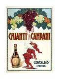 Chianti Campani - Small