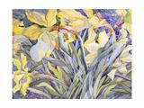 Daffodils  Van Vleck