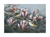 Magnolia and Chickadees