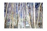 Mystery of Trees II