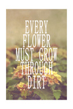 Every Flower