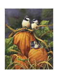 Chickadees and Pumpkins