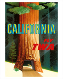 California Redwoods - TWA (Trans World Airlines)