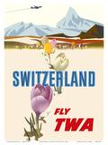 Switzerland- Fly TWA (Trans World Airlines) - Crocus Flowers Swiss Alps