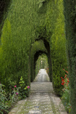 Granada  Spain  Alhambra  Famous Hedges of Gardens of the Generalife