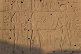 Temple Relief and Hieroglyphics  Karnak  Luxor  Egypt