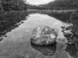 Australia  Tasmania  Lila Lake Cradle Mountain National Park