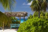 Bench Seat Overlooking Turquoise Waters of Half Moon Cay  Bahamas