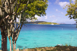 Us Virgin Island  St John View of St Thomas Sailboats and Snorkelers