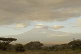 Kenya  Amboseli National Park  Kilimanjaro Mountain at Sunrise
