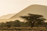 Kenya  Chyulu Hills  Old Donyo Wuas Lodge  Mbirikani  Sunrise