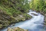 Slovenia  Near Bled  Vintgar Gorge