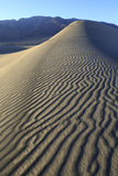 Patterns Along the Sand Dunes  Mesquite Dunes  Death Valley NP