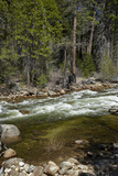 Merced River  Yosemite Valley  Yosemite National Park  California  USA