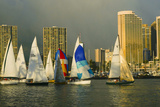 Sailboat Race  Ala Moana Beach Park  Waikiki  Honolulu  Hawaii
