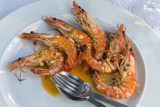 Portugal  Porto  Shrimp with Garlic and Butter