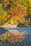 Fall Colors Reflect in the Saco River  New Hampshire White Mountains