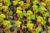 Samba Parade at Sambadrome During Carnival  Rio de Janeiro  Brazil