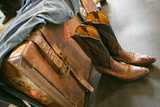 Cowboy Snakeskin Boots and an Antique Suitcase  Santa Fe  New Mexico