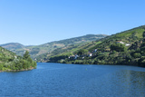 Europe  Portugal  Douro River  Douro River Valley Vineyards