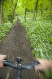 View from Bicycle Along Wooded Track  Uley  Gloucestershire  England