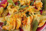 Mexico  Oaxaca  Squash Blossom Flowers