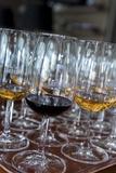 Europe  Portugal  Valenca Do Douro  Tasting Room at Sandeman Winery