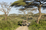 Landscape of the African Savanna with Safari Vehicle  Tanzania