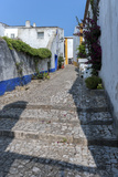 Europe  Portugal  Obidos  Cobblestone Street