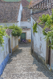 Europe  Portugal  Obidos  Cobblestone Steps