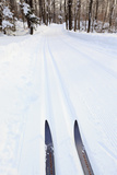 Cross Country Skis  Notchview Reservation  Windsor  Massachusetts