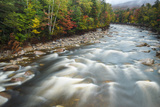 Autumn Along the Pemigewasset River  White Mountain NF  New Hampshire