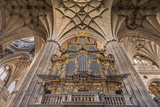 Europe  Spain  Salamanca  Cathedral Organ