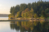 USA  WA Fletcher Bay  Bainbridge Island Beginnings of Fall Color