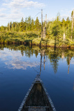 Canoeing on the Cold Stream in the Northern Forests of Maine  Usa