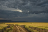 Kenya  Maasai Mara  Mara River Basin  Storm Cloud at Sunset and Road