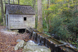 Tennessee  Great Smoky Mountains NP  Tub Mill and Millrace in a Forest